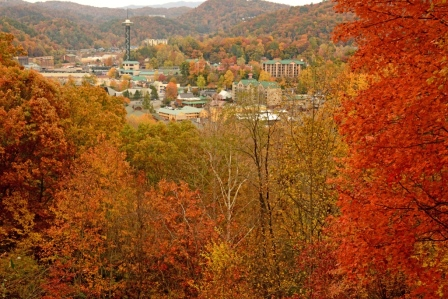 Fall Color Over Gatlinburg by Sam Hobbs