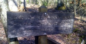 Rich Mountain Loop Trail sign